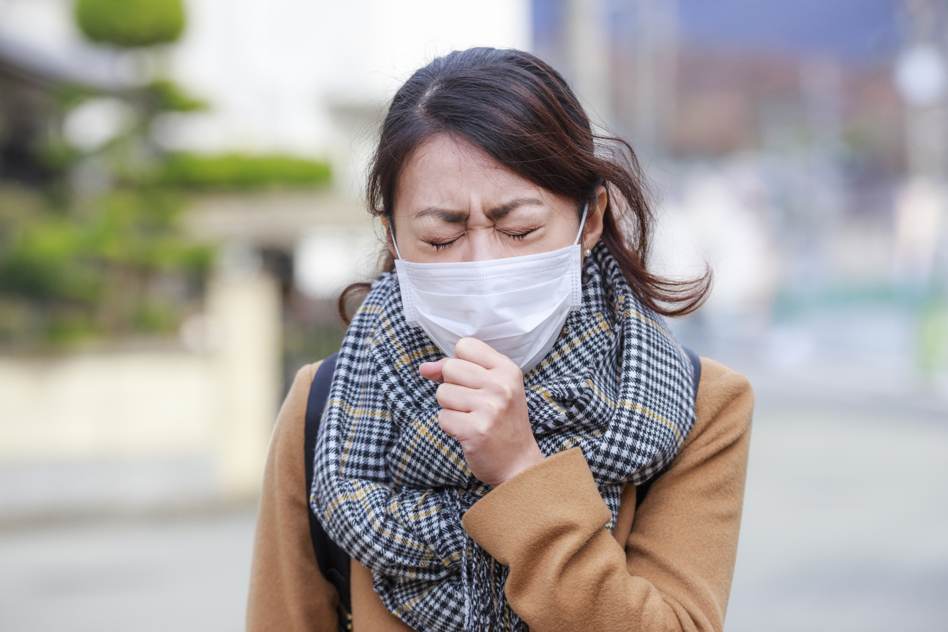 はちみつが風邪に効くって本当?