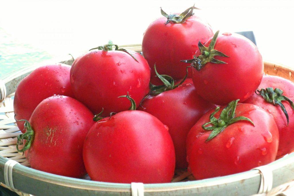 トマトとはちみつの健康効果